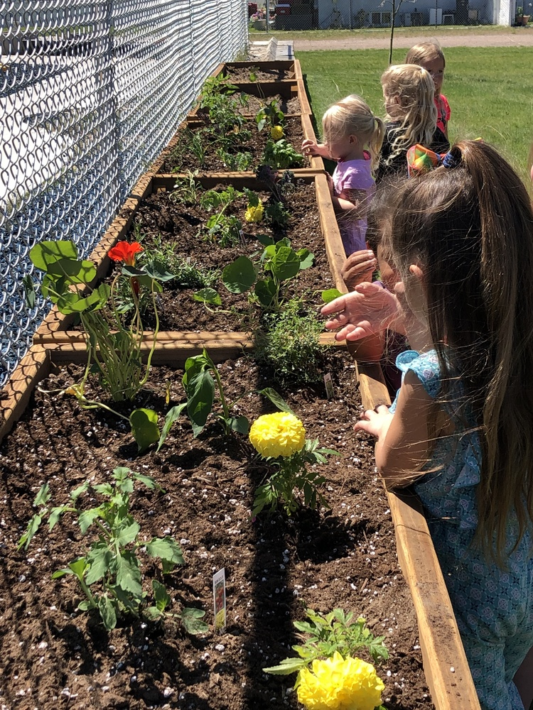 Gardening with Peaceful Prairie Nursery, Inc.